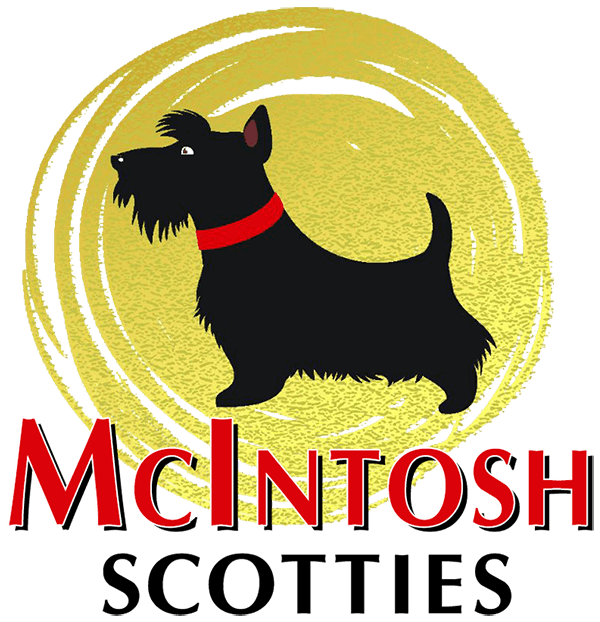 McIntosh Scotties logo